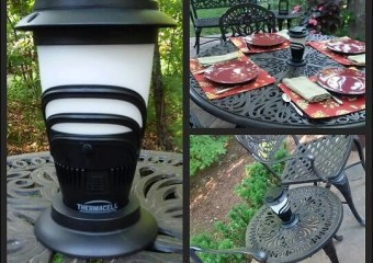 Keeping Your Backyard Mosquito-Free This Summer!
