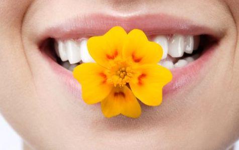 sorriso_fiore