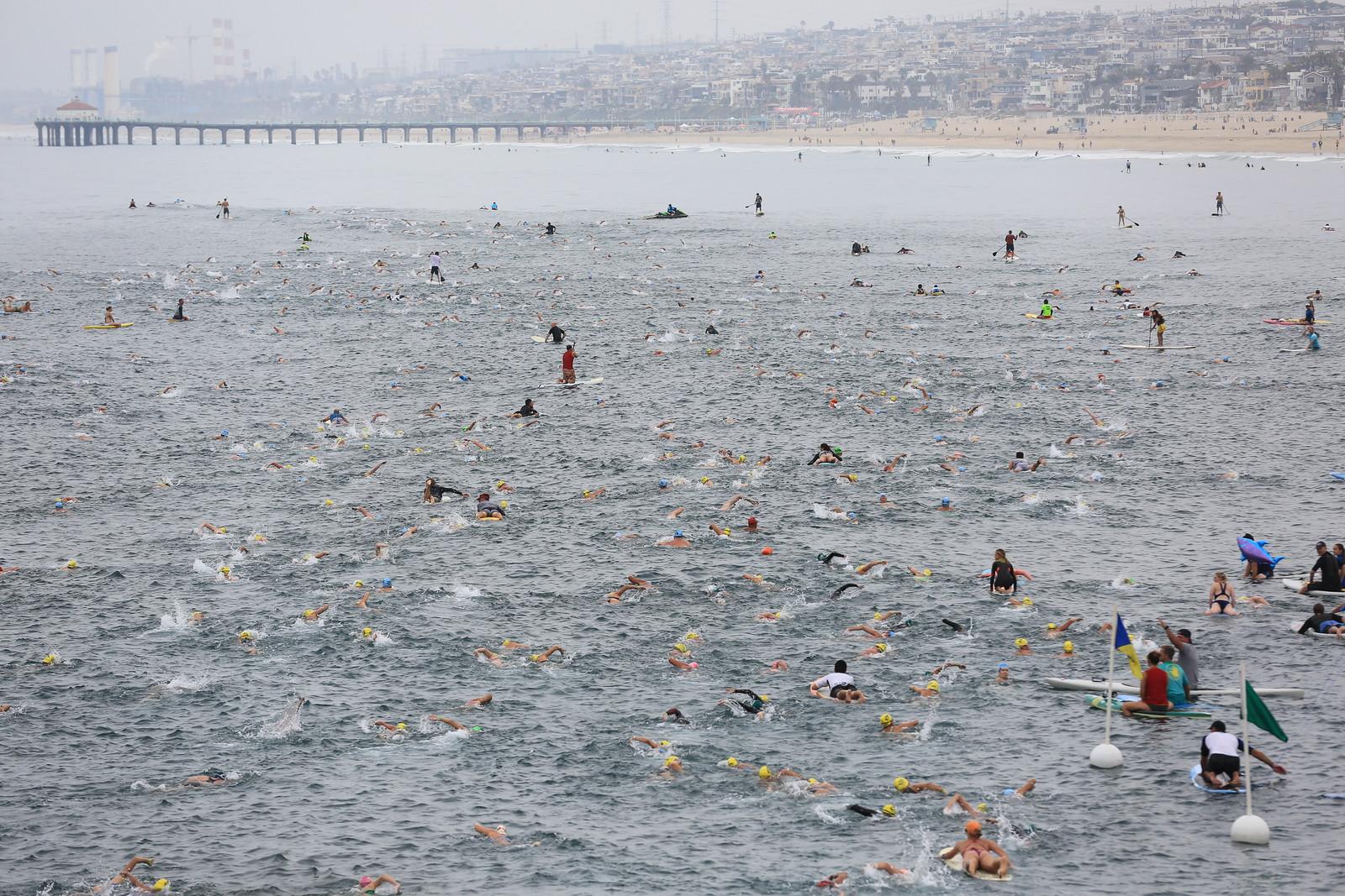 Swimmers in 2016 race