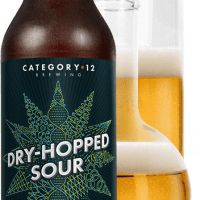 Dry Hopped Sour Sets The Bar From Category 12 Brewing