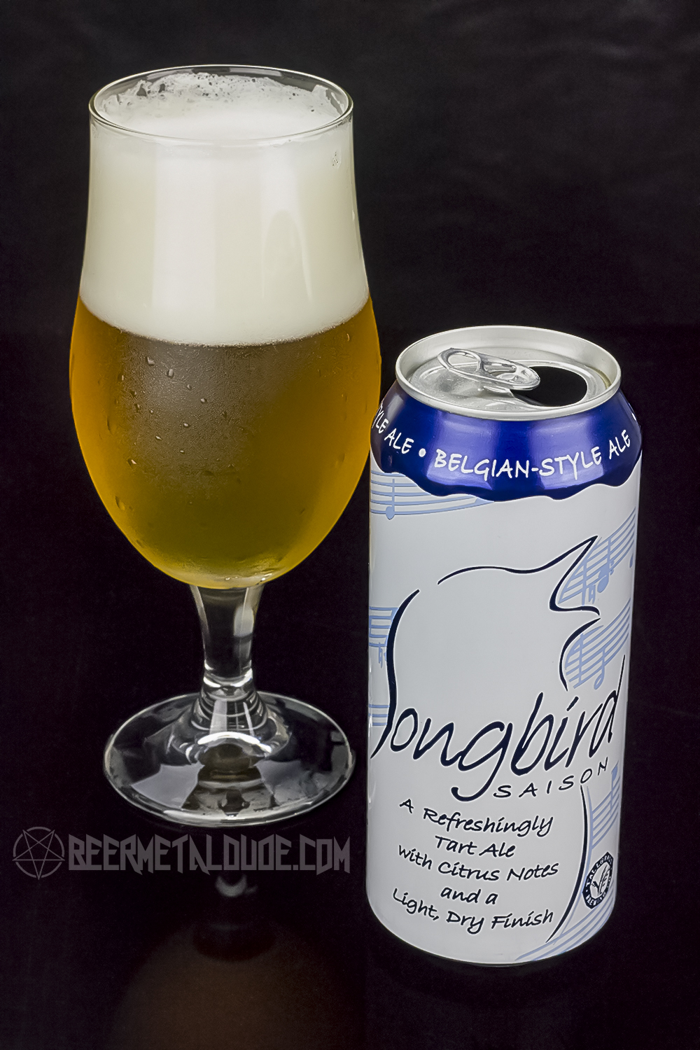 Saison Belgian Farmhouse Ale Beer Review Tallgrass Brewing Company Songbird Saison