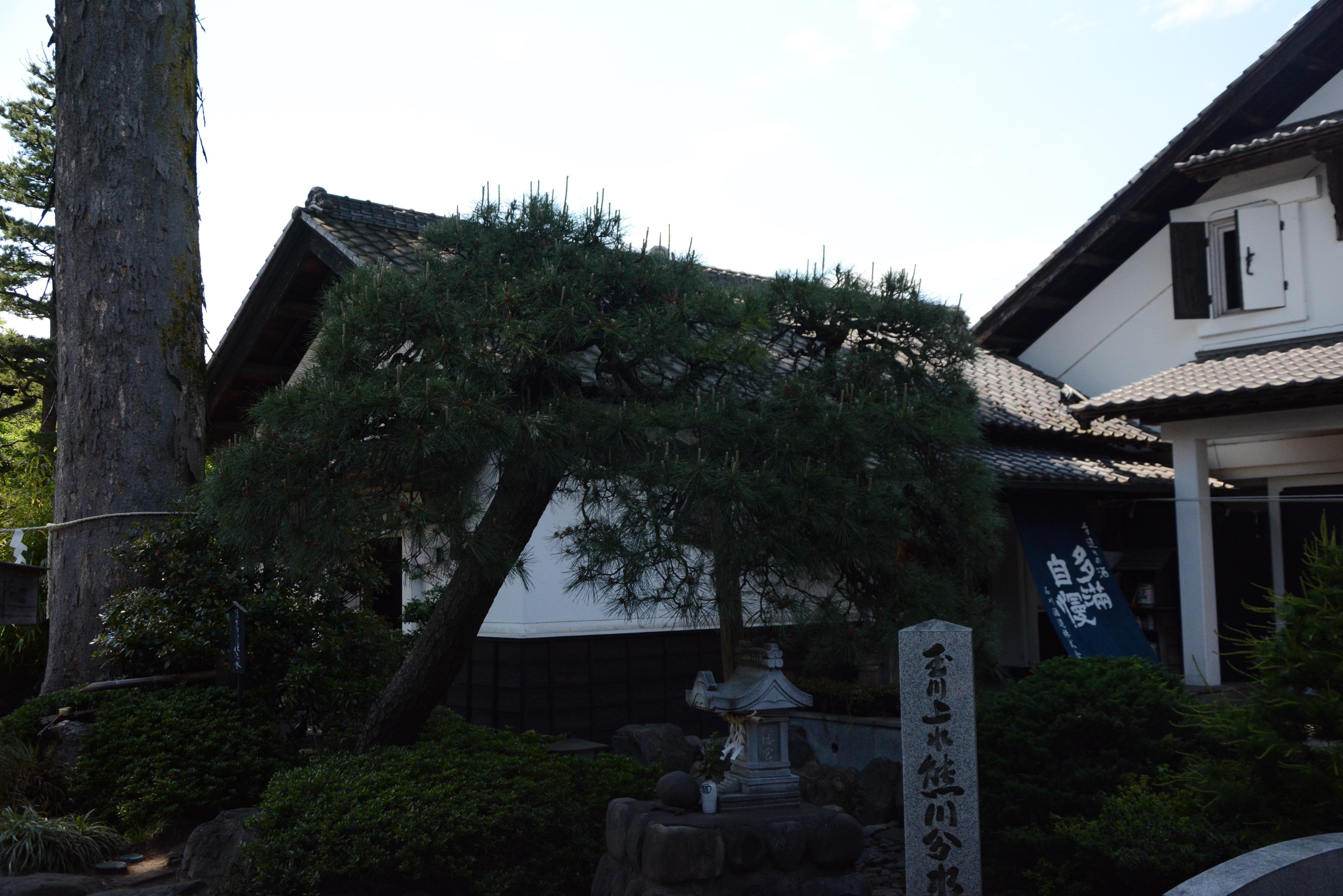 Ishikawa Shuzo