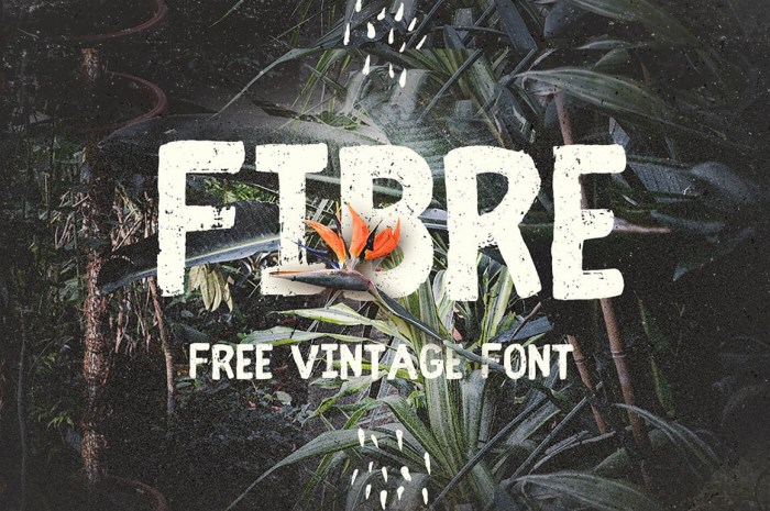 Fibre Free Vintage Font Download