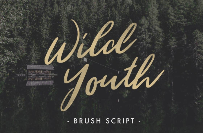 Wild Youth Font Download