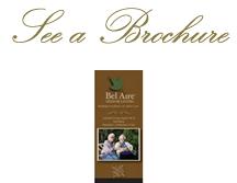 brochure-header-vert