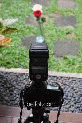 pemotretan-foto-focus-stacking