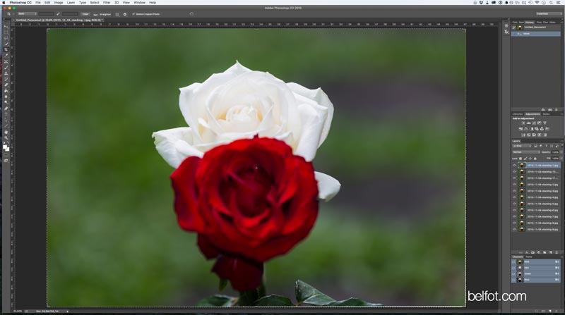 proses-focus-stacking-photoshop-c