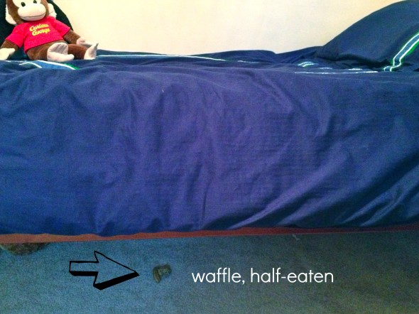 waffle under bed