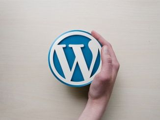 Los Mejores Blogs de Famosas