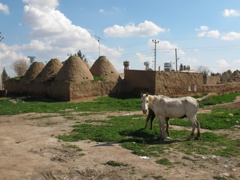 Harran Village