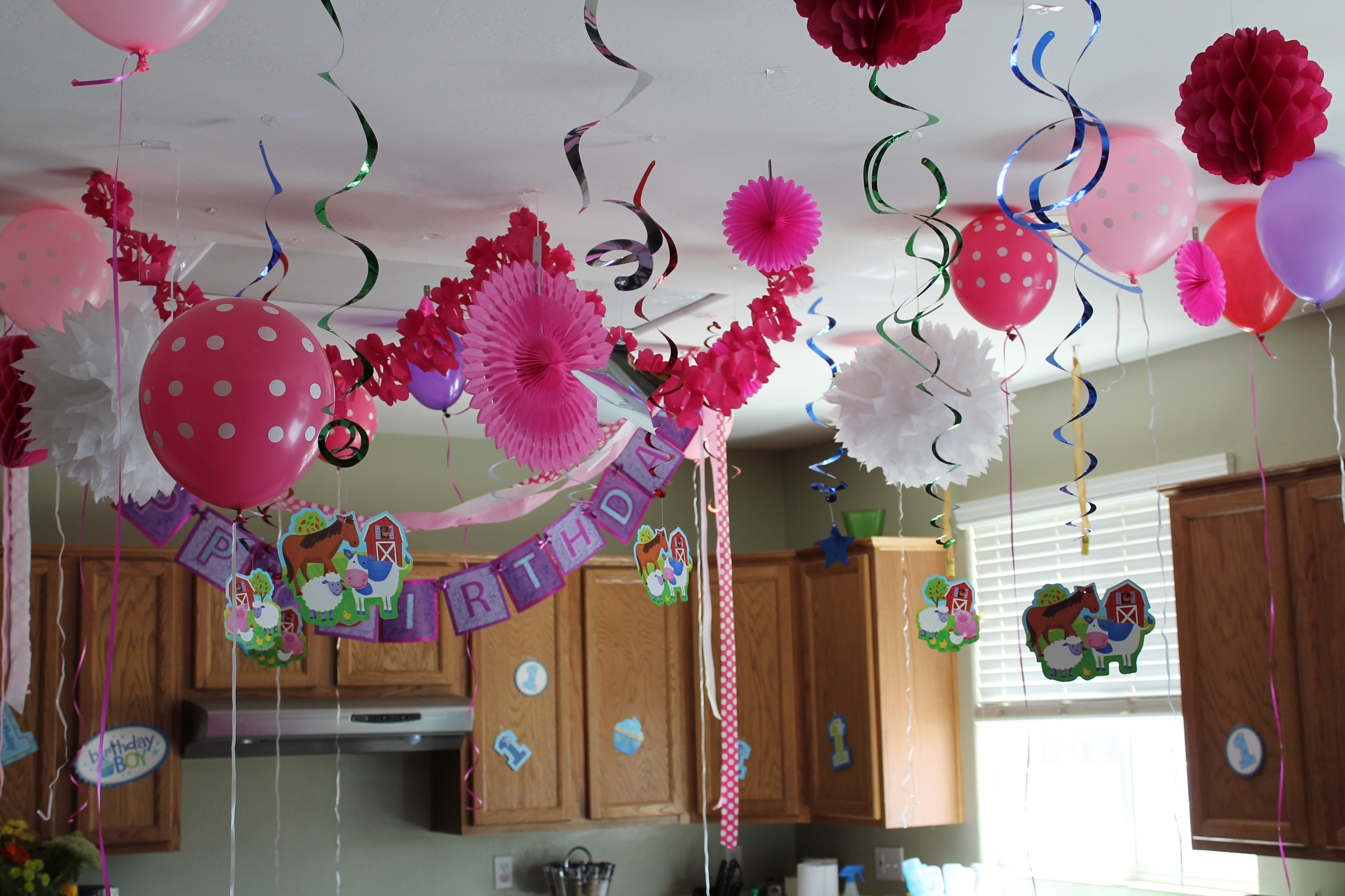 Decoration For Party The House Decorations For The Babies First Birthday Party