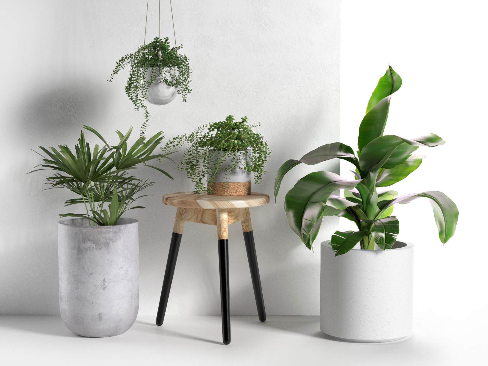 Big Pot Plants Stool And Pots With Plants