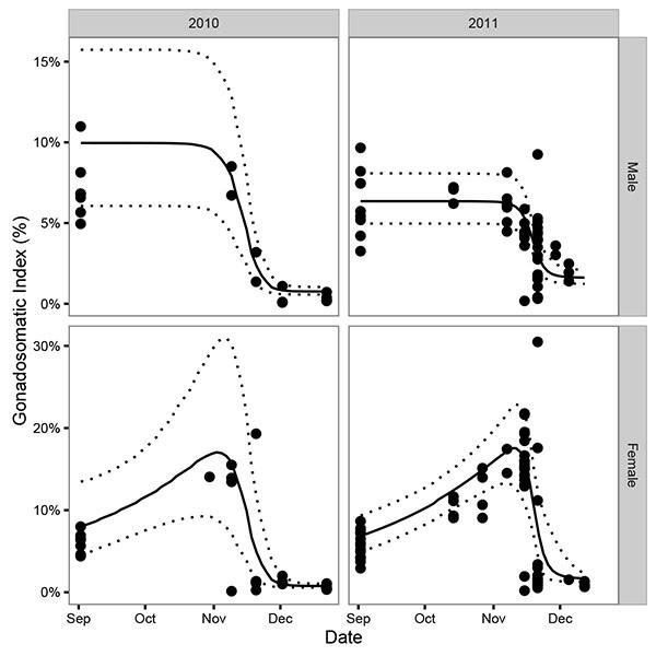 When Do Mountain Whitefish (Prosopium williamsoni) Spawn? A