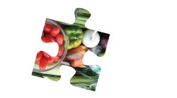 Piecing together a sustainable food system