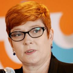 Marise Payne's anti-male discrimination smokescreen