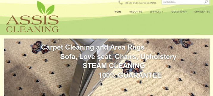 home, carpet and window cleaning website desing