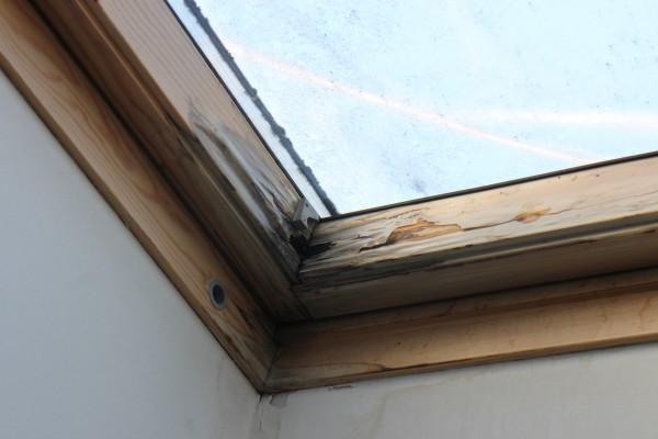 Probleme mit Schimmel und Feuchtigkeit am Dachfenster?