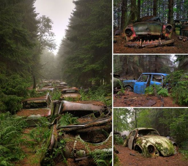 nature-reclaiming-abandoned-places-10_result