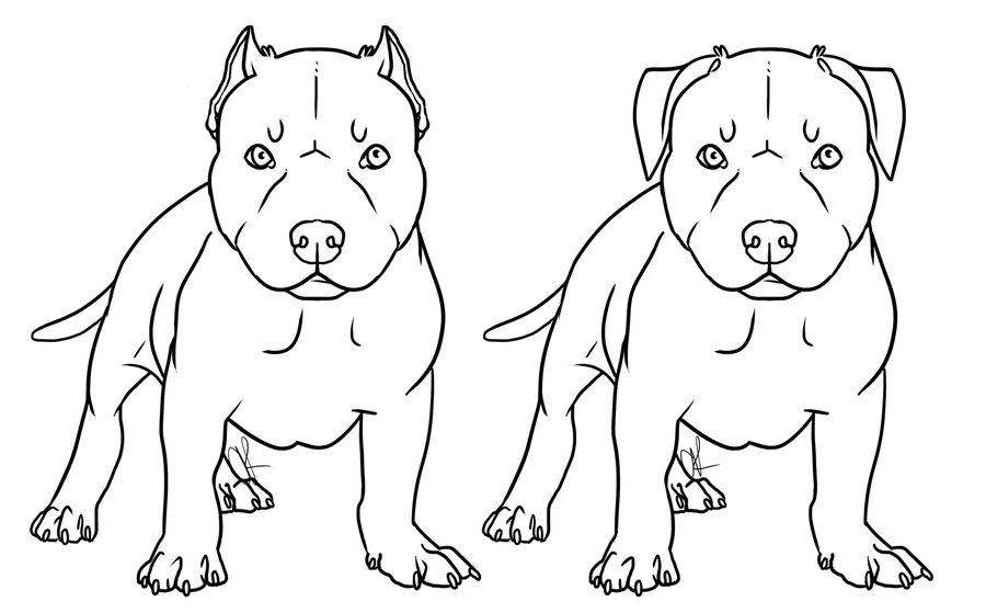 Pitbull coloring pages to download and print for free - best of coloring pictures of dogs and puppies