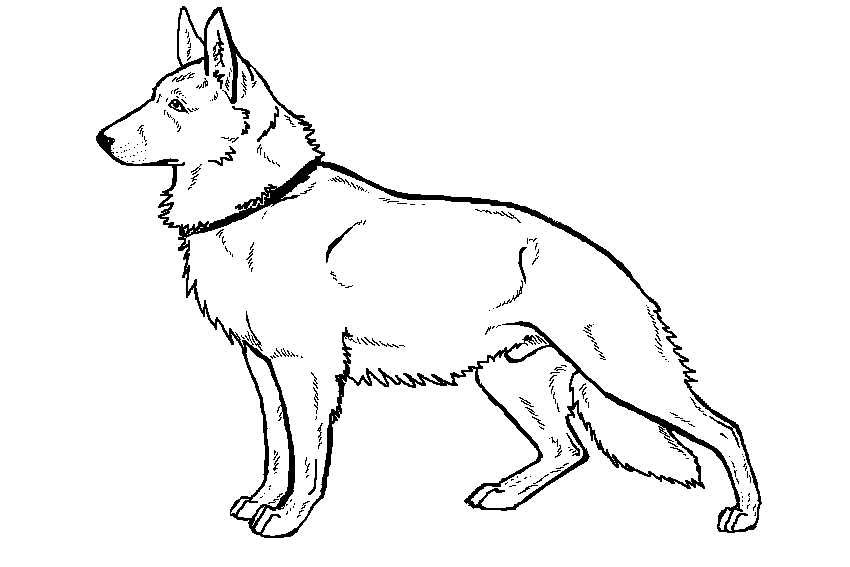 German shepherd coloring pages to download and print for free - best of coloring pages baby dog