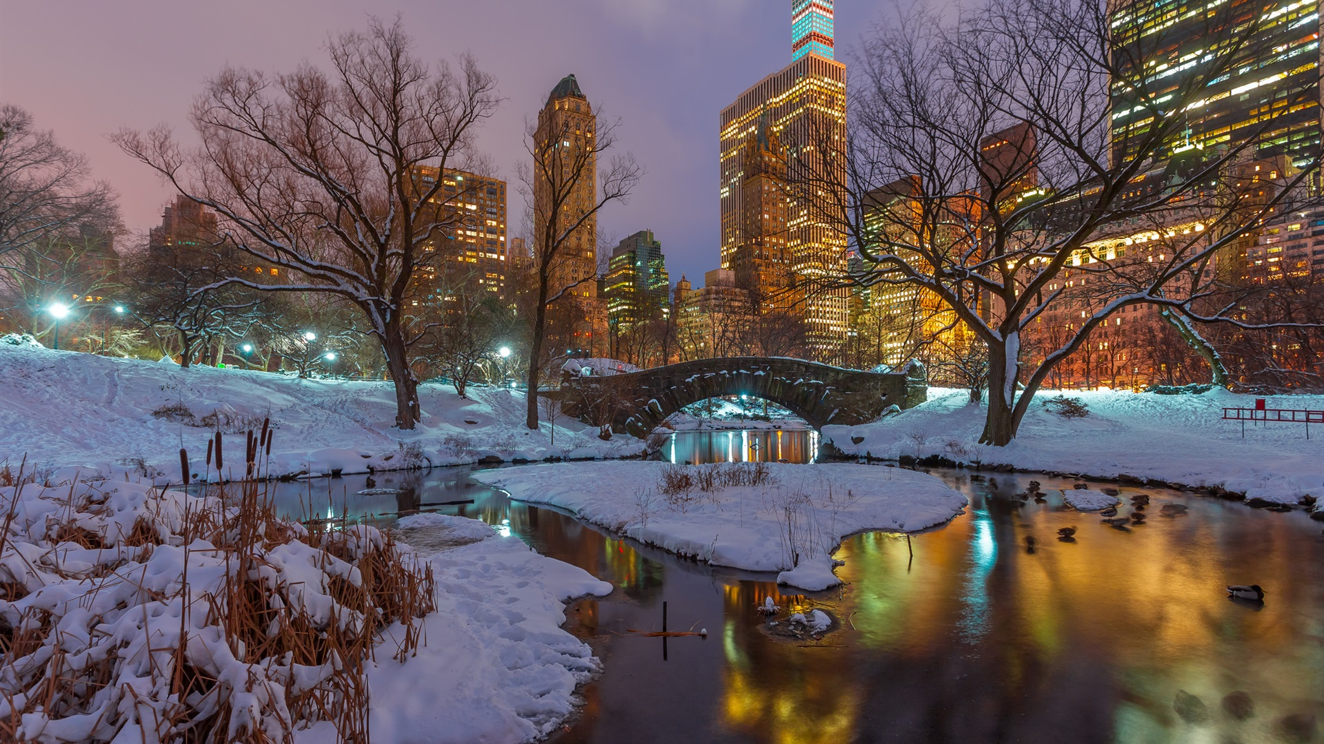 Times Square Iphone 6 Wallpaper Wallpaper New York Central Park Snow Trees River