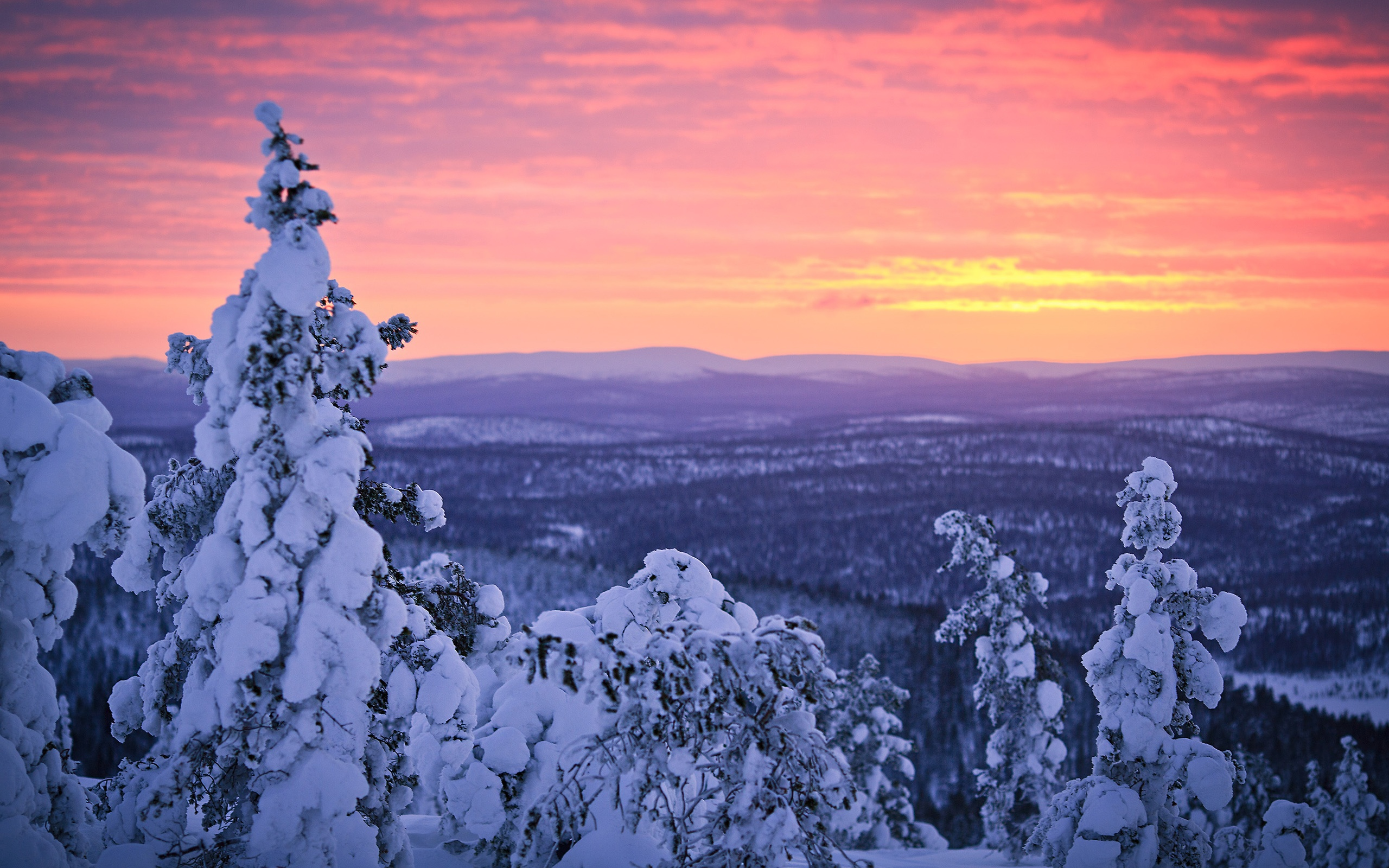 Snow White Iphone Wallpaper Wallpaper Finland Lapland Winter Snow Forest Sunset
