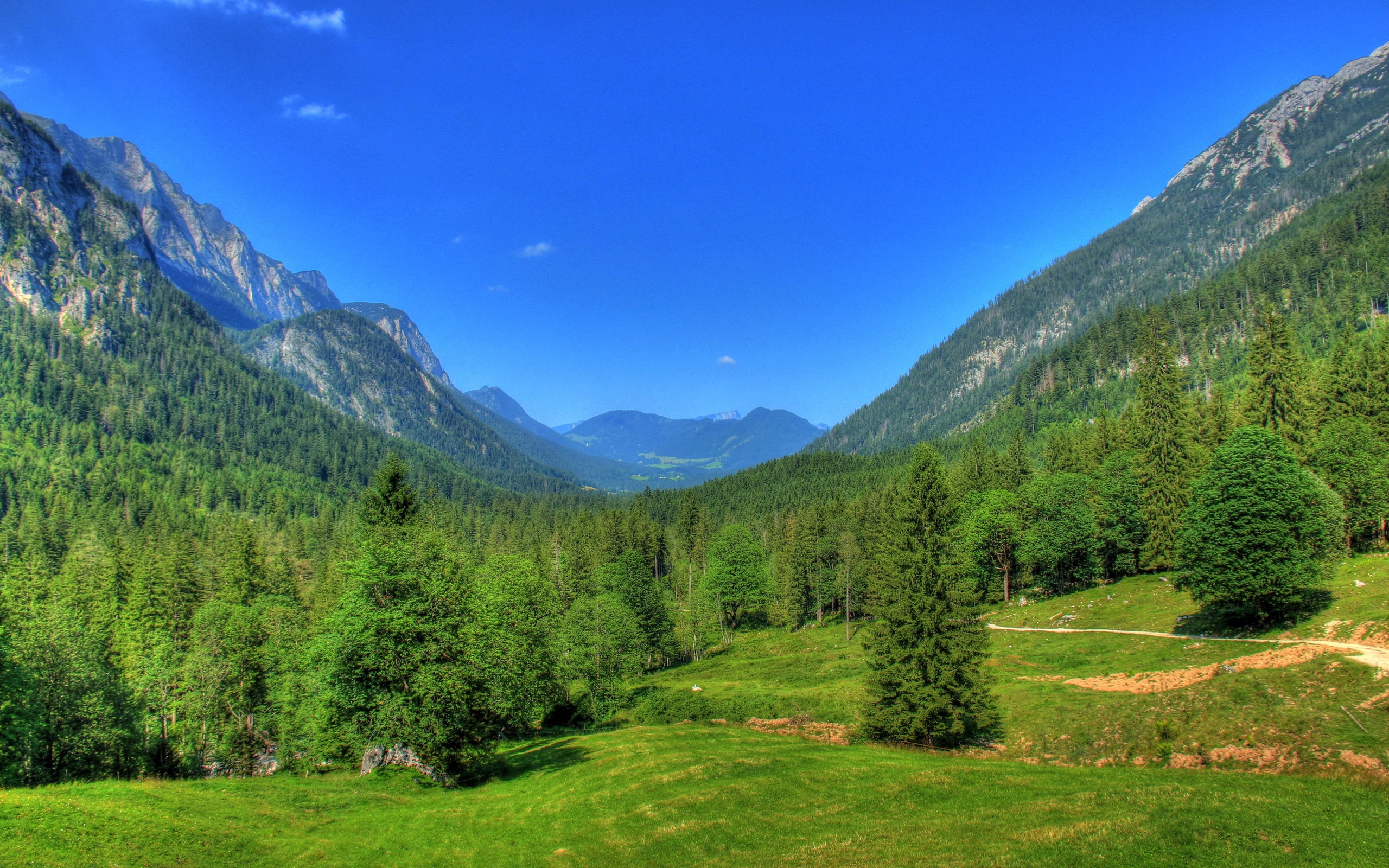 Cute Love Wallpapers Hd Full Size Germany Bavaria Nature Landscape Mountains Forest