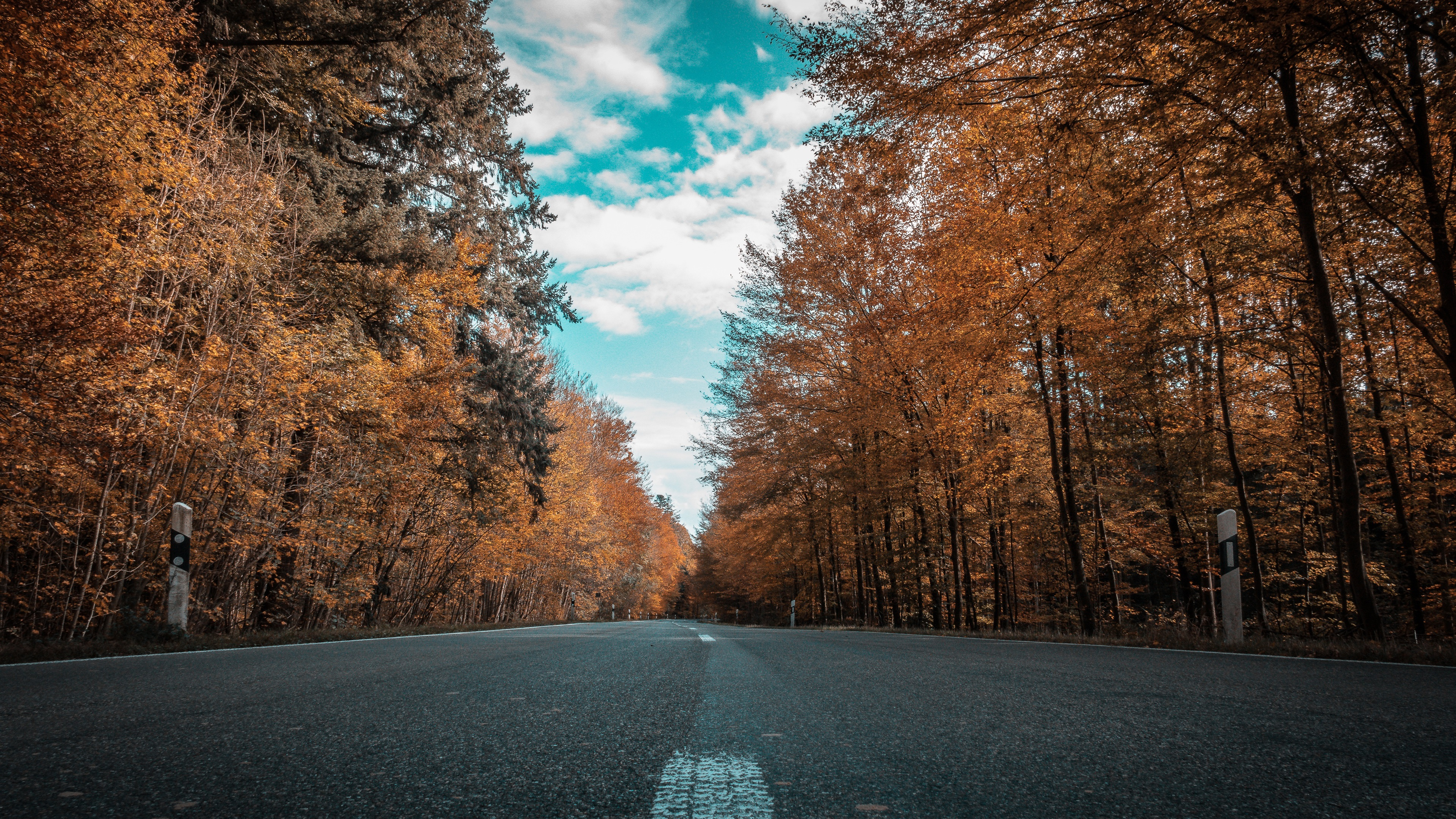 Alone Girl Wallpaper Hd Download Wallpaper Autumn Road Forest Trees 3840x2160 Uhd 4k