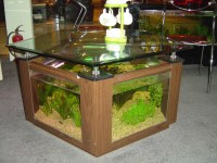 ustom Shapes and Frames for Aquarium Coffee Table ...