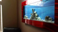 Aquavista 500 Wall Mounted Aquarium With Rama Background ...
