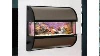 Fish Tank Wall Mounted Aquariums | Aquarium Design Ideas