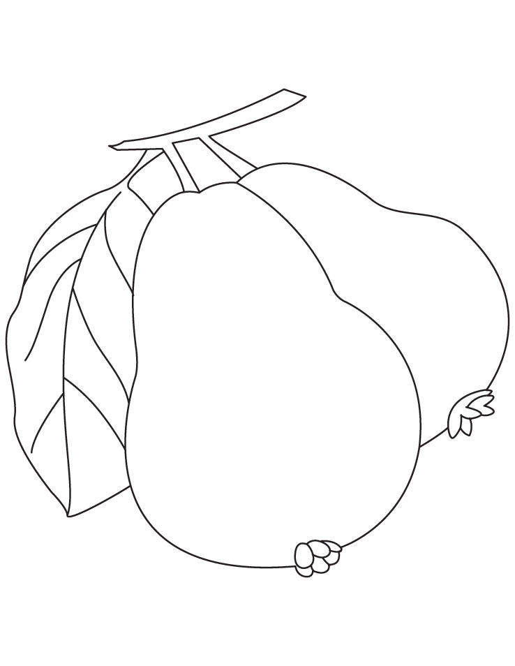 Guava Coloring Pages