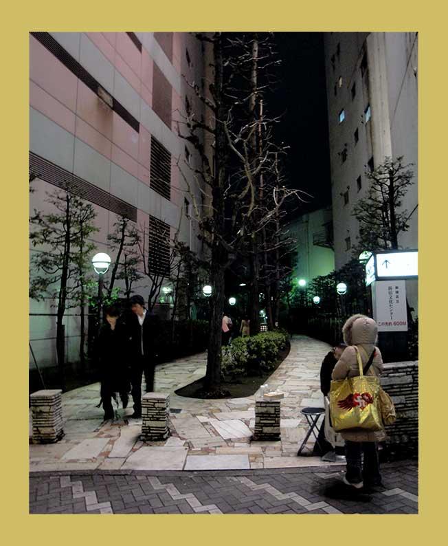 Kleiner japanischer Garten und Schrein zwischen Hochhäusern fotografiert im nächtlichen Tokio