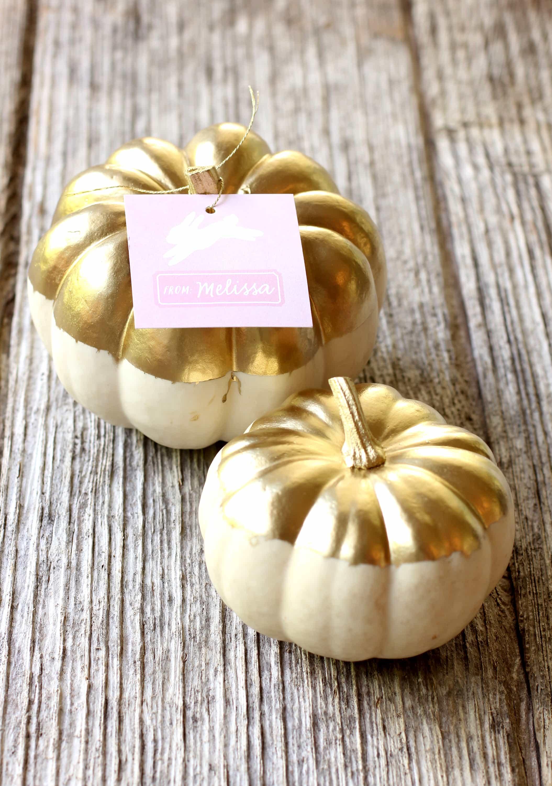 Pumpkins Fall Wallpaper Diy Gold Metallic Pumpkin Party Favor Tutorial Best