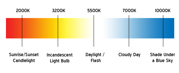 Best HID Color Headlight Color Guide - Best Headlight Bulbs
