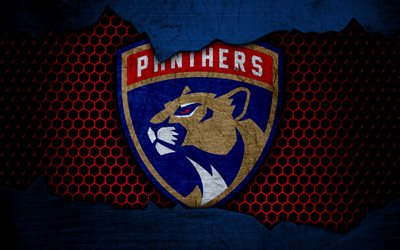 How To Install 3d Wallpaper Download Wallpapers Florida Panthers 4k Logo Nhl