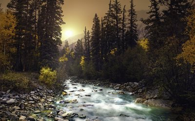 3d Hq Wallpaper Download Download Wallpapers Mountain River Sunset Forest Green