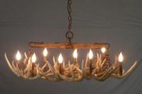 Deer Antler Chandelier DIY | Light Fixtures Design Ideas