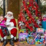 Mueller Er 4th Annual Holiday Charity Toy Drive