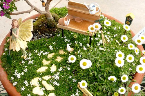 Medium Of Diy Mini Garden Ideas