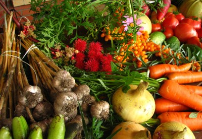 Go green with organic vegetables- Details of cooking ingredients.