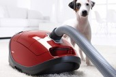 Miele Complete C3 Cat & Dog Powerline Vacuum Cleaners  Review