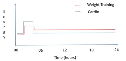 bmr-cardio-vs-weights