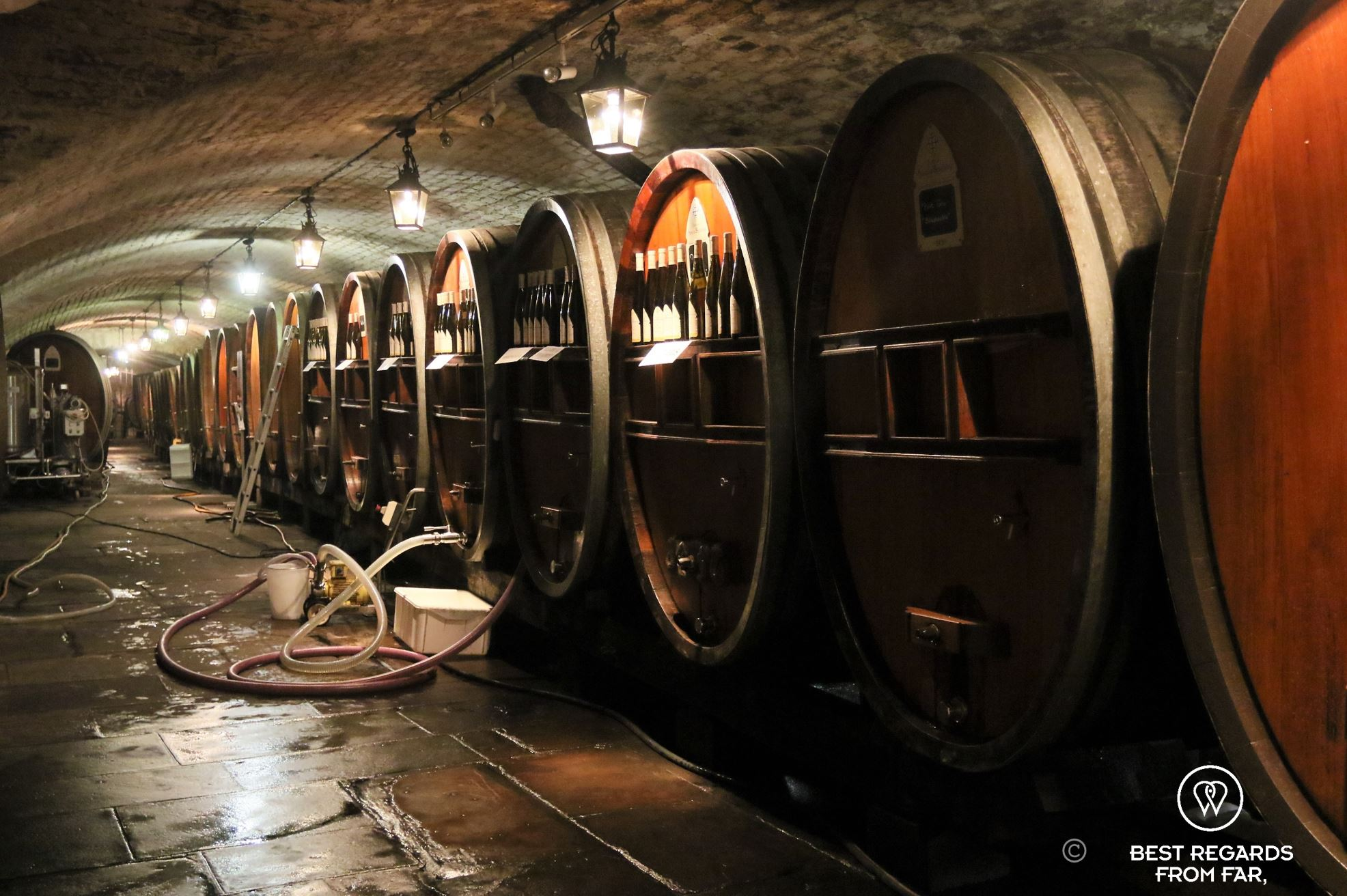 Cave A Vin Strasbourg Cave Historique Hospices Strasbourg 1 Best Regards From Far