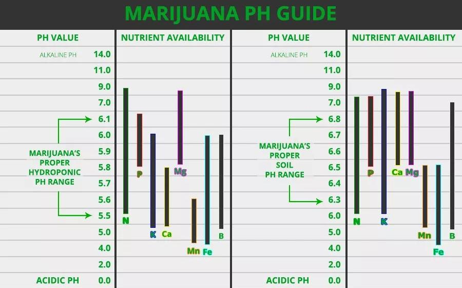 HANDY LITTLE CANNABIS PH METER CHART Best Seed Bank - ph chart
