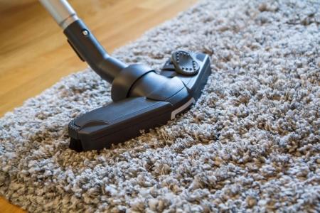 Vacuum Shag Rug Rugs Ideas