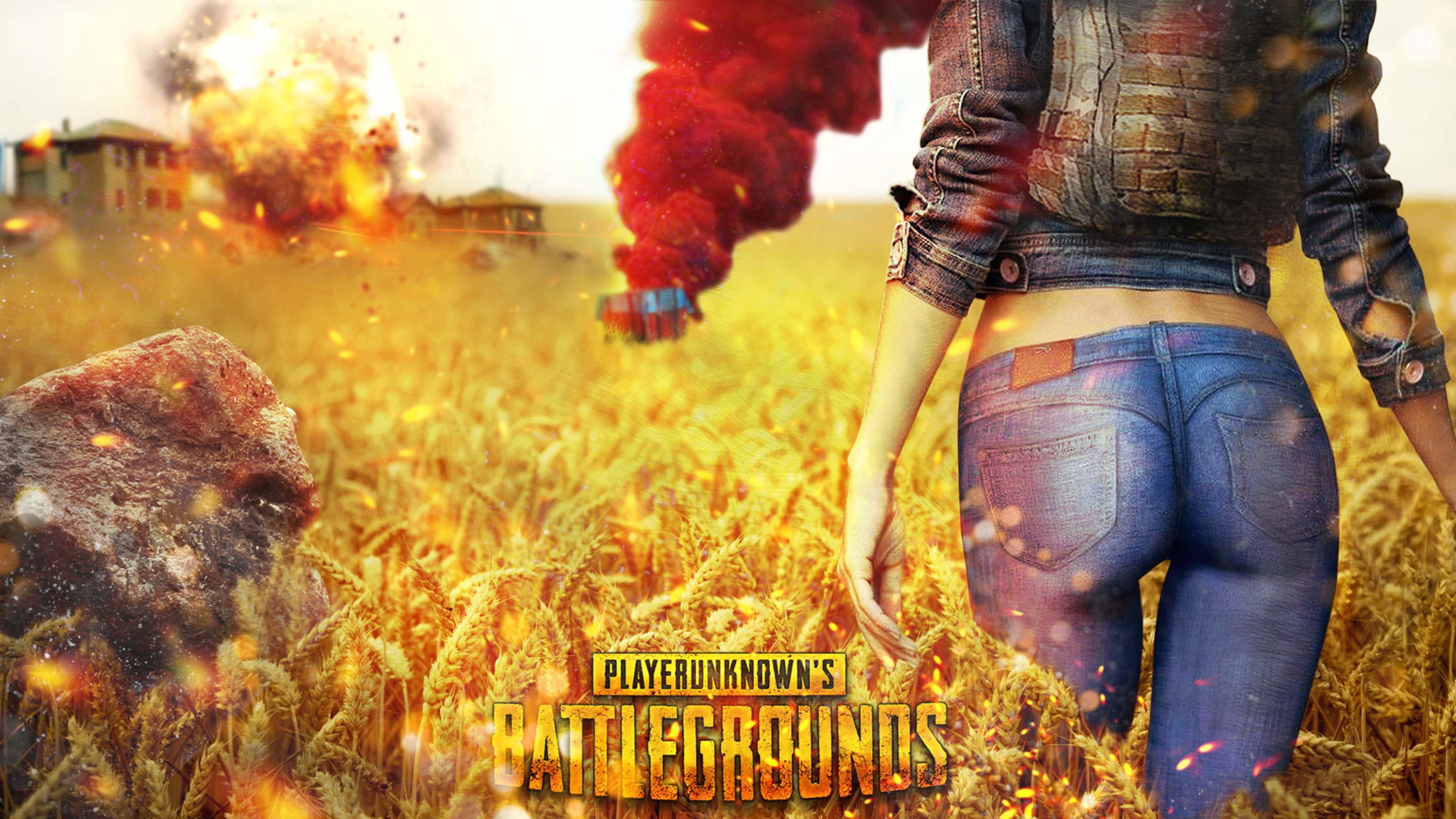Pubg Dual Monitor Wallpaper  Playerunknowns Battlegrounds Pubg Cover 4k Wallpaper