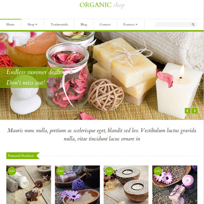 Organic Shop WordPress Theme Best WordPress Themes 2018