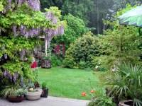 Window View Of Garden | www.pixshark.com - Images ...