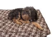 Wren's Dog Notes: Dog Beds